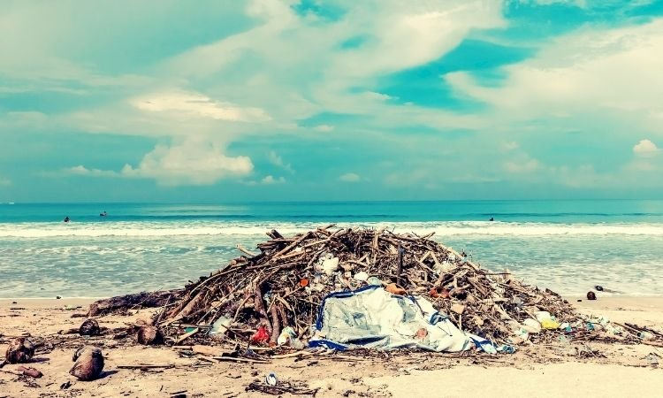 Plastic or Planet? - Ditch plastic for our oceans and the aquatic life!